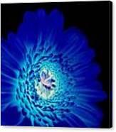 Glow Blue Canvas Print