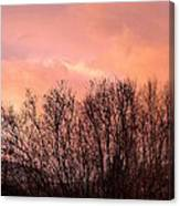 Glow Of A Winter Sunset Canvas Print