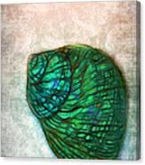 Glowing Seashell Canvas Print