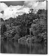 Gnoll Country Estate 2 Mono Canvas Print
