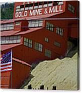 Gold In Them Thar Hills Canvas Print