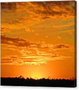 Golden Evening Canvas Print