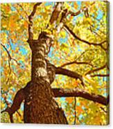 Golden Green Canvas Print
