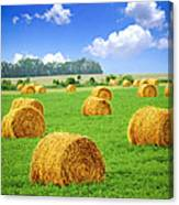 Golden Hay Bales In Green Field Canvas Print