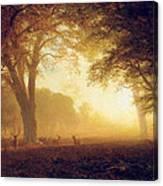 Golden Light Of California Canvas Print