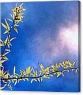 Golden Locust Canvas Print