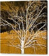 Golden Magical Tree Canvas Print