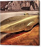 Golden Rod Dearborn Mi Canvas Print