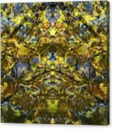 Golden Rorschach Canvas Print