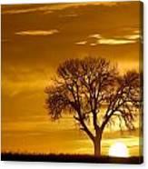 Golden Sunrise Silhouette Canvas Print