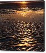 Golden Sunset On The Sand Beach Canvas Print