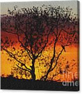 Golden Sunset Over Circle B Bar Sandstone Canvas Print