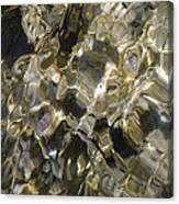 Golden Treasure Just Below Canvas Print