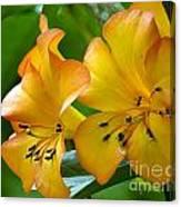 Golden Tropical Flowers Canvas Print