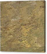 Goldtone Stone Abstract Canvas Print