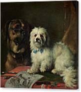 Good Companions Canvas Print