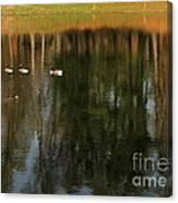 Goose Goose Duck Goose Canvas Print