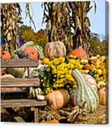 Gords Galore Canvas Print