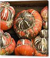 Gorgeous Gourds Canvas Print