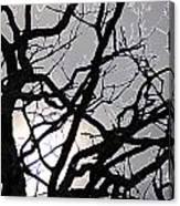 Goth Tree Canvas Print