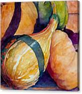 Gourds In The Fall Canvas Print