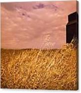Grain Elevator And Crop Canvas Print