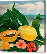 Grand Anse Still Life Canvas Print