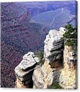Grand Canyon 39 Canvas Print