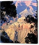 Grand Canyon 60 Canvas Print
