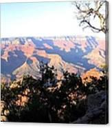 Grand Canyon 61 Canvas Print