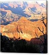 Grand Canyon 62 Canvas Print