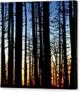 Grand Canyon North Rim Sunset Canvas Print