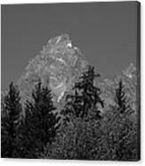 Grand Teton Bw Canvas Print