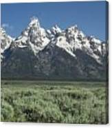 Grand Teton Spring Canvas Print