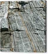 Granite With Quartz Inclusions Canvas Print