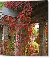 Grape Leaves On Columns Canvas Print