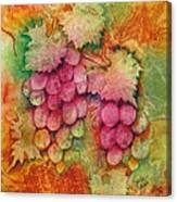 Grapes With Rust Background Canvas Print