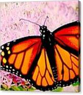 Graphic Monarch Canvas Print