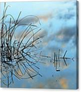 Graphics In Nature Canvas Print