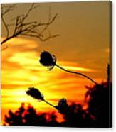 Grasping The Sunset Canvas Print