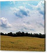 Grassy Country Fields Canvas Print