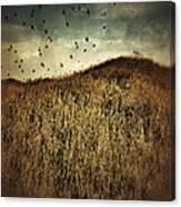 Grassy Hill Birds In Flight Canvas Print