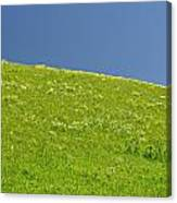 Grassy Slope View Canvas Print