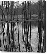 Gray Day Reflections Canvas Print