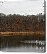 Gray Lake Canvas Print