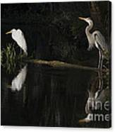 Great Blue Heron And Great Egret At Day's End Canvas Print