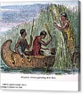 Great Lakes: Canoe, 19th C Canvas Print