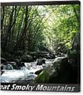 Great Smoky Mountains National Park 10 Canvas Print