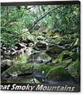 Great Smoky Mountains National Park 5 Canvas Print