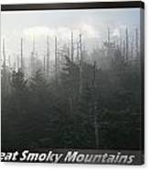 Great Smoky Mountains National Park 8 Canvas Print